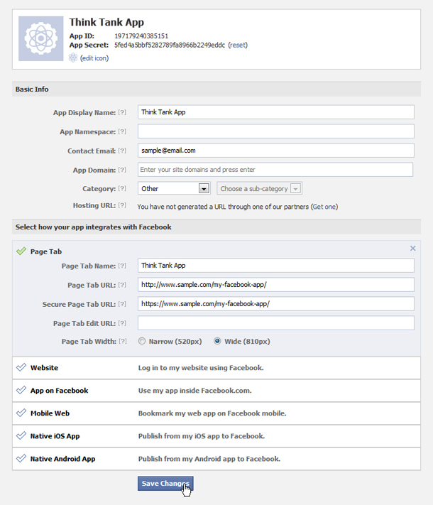 Facebook Apps Basic Settings Window