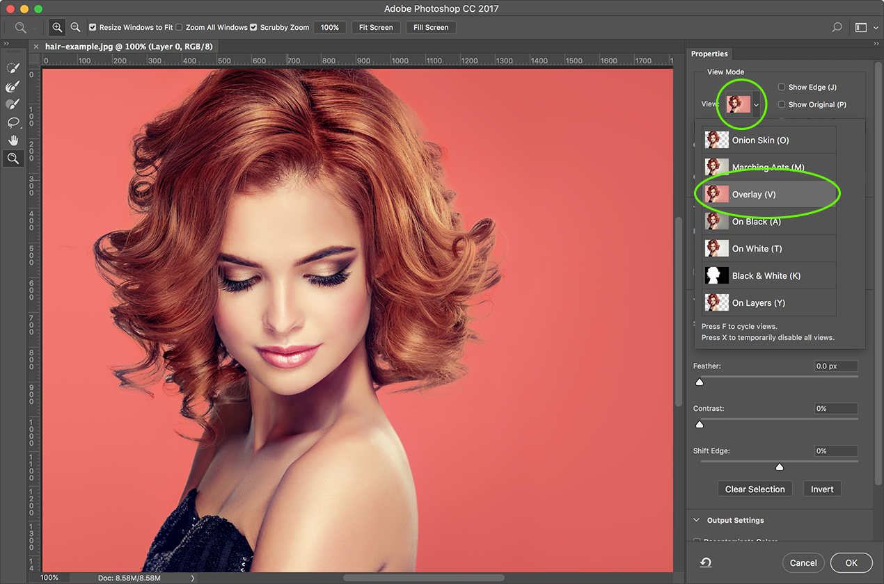 Select Hair In Photoshop Cc Using Select Mask Think Tank